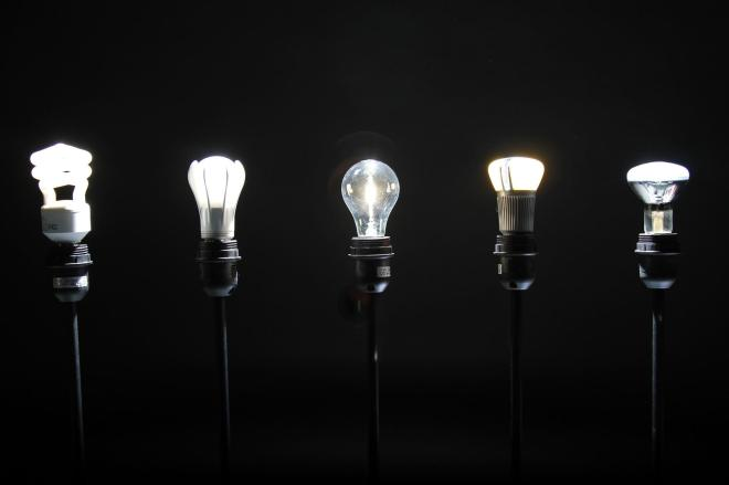 innovation-disruption bulbs